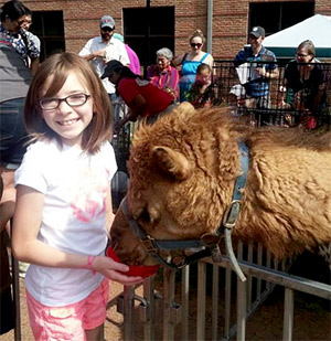 Photo of a girl feeding a camel at Family Fun Day.