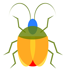 Image of a colorful beetle.