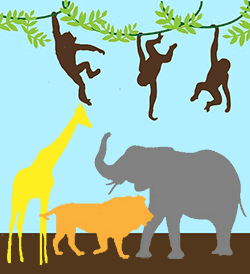 Image of jungle animals.