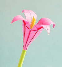 Photo of an origami flower