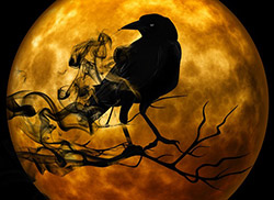 Image of a raven silhouetted against the moon.